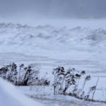 امریکہ میں غیر معمولی طوفان زندگی مفلوج