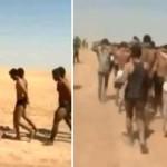 باغیوں کی طرف سے انٹر نیٹ پر جاری کی جانے والی تصویر میں شامی فوجیوں کا جانگیہ پہنے ہوئے قطار میں دیکھا جا سکتا ہے