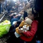 یورپی ممالک کوٹے کے مطابق پناہ گزینوں کی آبادکاری پہ آمادہ