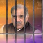 مسلم لیگ ن کے صدر اور سابق وزیر اعلیٰ شہباز شریف