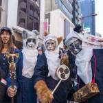 جاپانی دارالحکومت ٹوکیو کے نواحی قصبے کاگو رازاکا میں سالانہ کیٹ فیسٹیول منایا جاتا ہے
